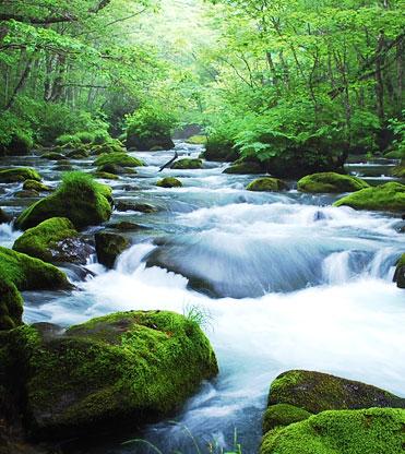 日本の絶景25、青森県・奥入瀬渓流